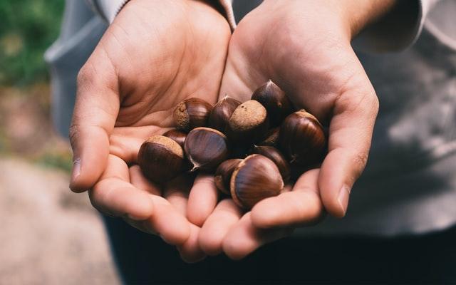 【ゴロッと豪快な秋の味覚】味わい深い栗の渋皮煮のレシピと作り方まとめ。